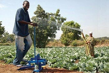 moneymaker pump used for crop irrigation in Tanzania